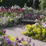 FREE entry to RHS Rosemoor Flower Show